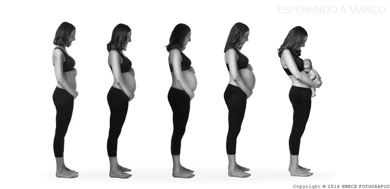 evo-embarazo